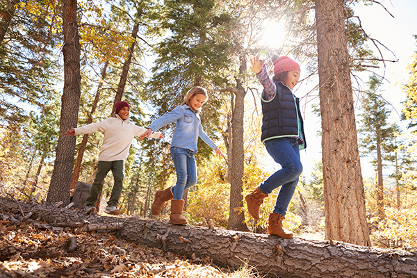 Children walking on a fallen log in the  middle of a forest.