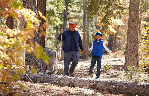 Father and son walk together in a forest