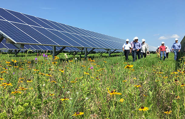 One of CleanChoice Energy community solar farms located in Maryland.