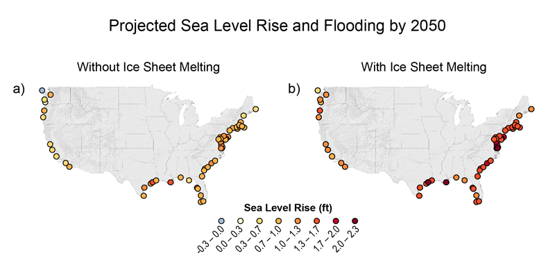 Coastal sea level rise by 2050