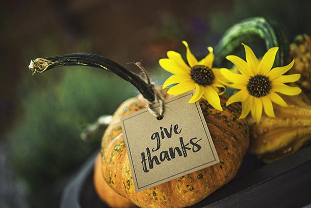 Pumpkin; Give Thanks; Thanksgiving